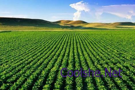 اسباب التصحر وتدهور الاراضي الزراعيه