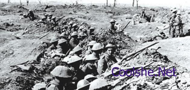 بلغ عدد الدول التي دخلت في الحرب العالمية الأولى