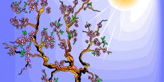 العلاقة بين البناء الضوئي والتنفس الخلوي